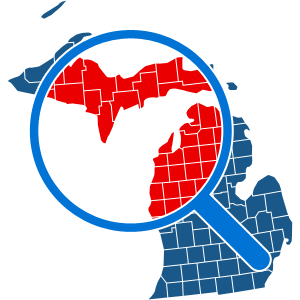 How To Get a Michigan Background Check Report