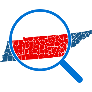 How To Get a Tennessee Background Check Report